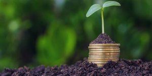 بیمه محصولات کشاورزی چیست؟